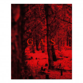 Album artwork for Wolfgang Voigt - Gas
