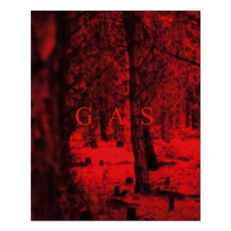 Album artwork for Wolfgang Voigt - Gas