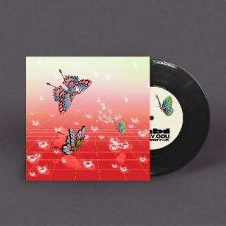 Album artwork for Nabi