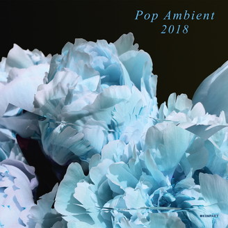 Album artwork for Pop Ambient 2018