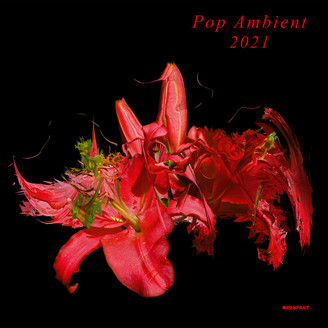 Album artwork for Pop Ambient 2021