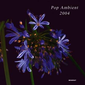 Album artwork for Pop Ambient 2004