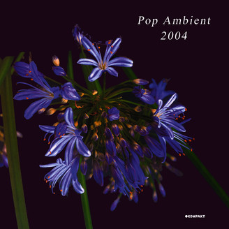 Album artwork for Pop Ambient 2004