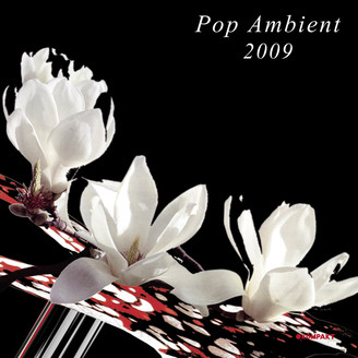 Album artwork for Pop Ambient 2009