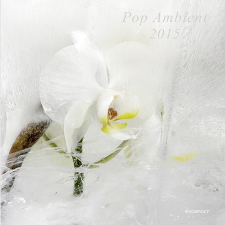 Album artwork for Pop Ambient 2015