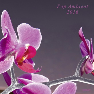 Album artwork for Pop Ambient 2016