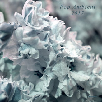 Album artwork for Pop Ambient 2017