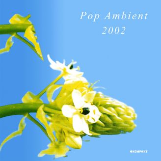 Album artwork for Pop Ambient 2002