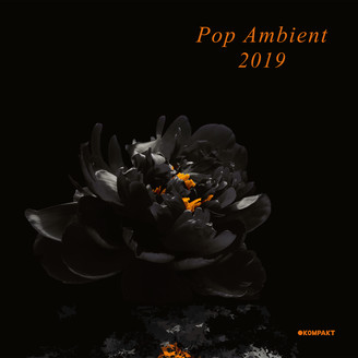 Album artwork for Pop Ambient 2019