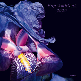 Album artwork for Pop Ambient 2020
