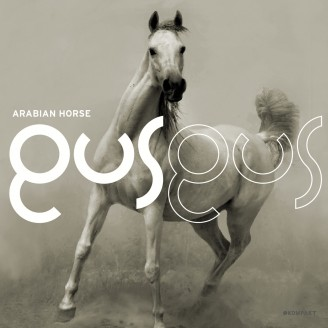 Album artwork for Arabian Horse