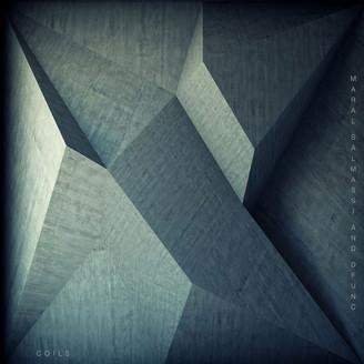Album artwork for Coils