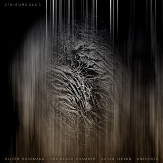 Album artwork for Surculus