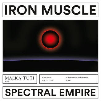 Album artwork for Iron Muscle
