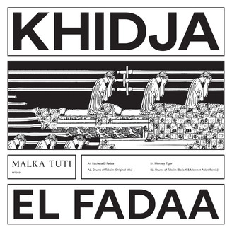 Album artwork for El Fadaa
