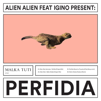 Album artwork for Perfidia