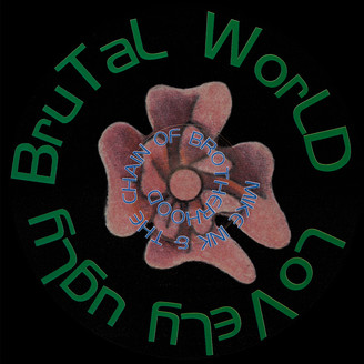 Album artwork for Lovely Ugly Brutal World