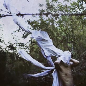 Album artwork for vin ploile