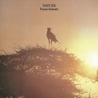 Album artwork for Nature