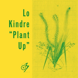 Album artwork for Plant Up