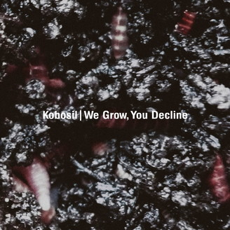 Album artwork for We Grow, You Decline