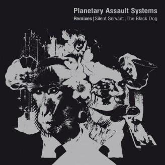 Remixes | Silent Servant | The Black Dog