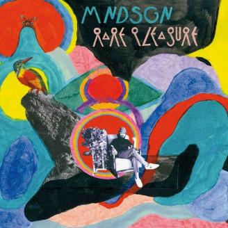 Album artwork for Rare Pleasure (black vinyl edition)