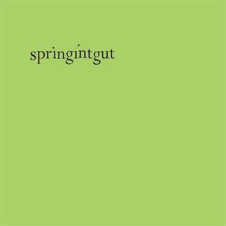 Springintgut