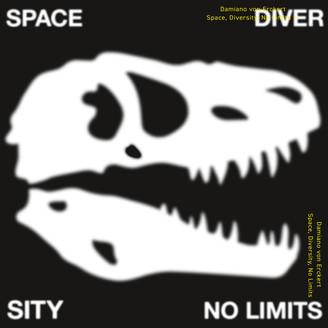 Album artwork for Space, Diversity, No Limits