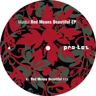 Album artwork for Red Means Beautiful