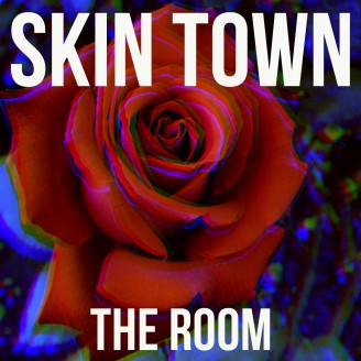 Album artwork for The Room