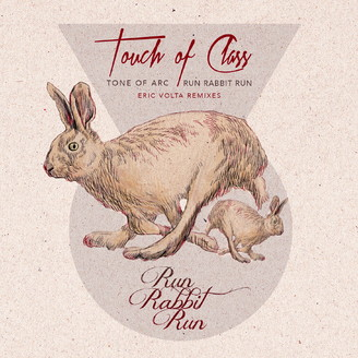 Album artwork for Run Rabbit Run (Remixes)