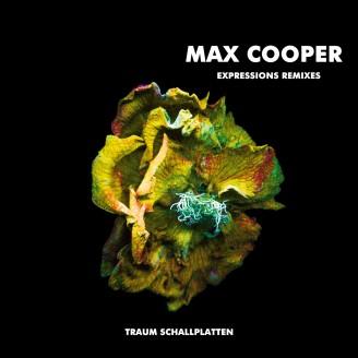 Album artwork for Expressions Remixes