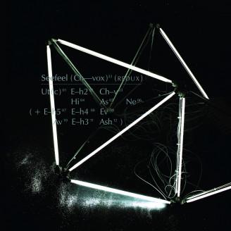 Album artwork for (Ch-Vox) Redux (Gatefold 2LP+MP3)