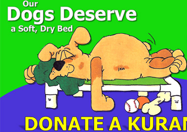 Much more comfortable than a concrete floor, these beds encourage happier, healthier, and more relaxed dogs.  They make cleaning a lot easier too.  Our goal is to have a Kuranda Dog Bed for every dog.  Please help us provide them with a good nights sleep.