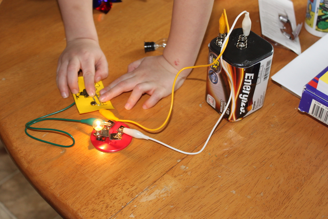 lightbulb, alligator clip, 9-volt battery, circuitry kit