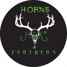 Hooks Horns & Feathers