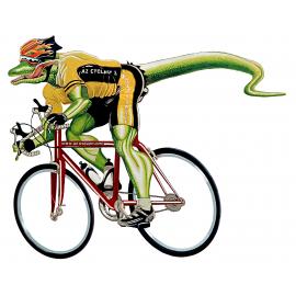 Az Cyclery & Multisport