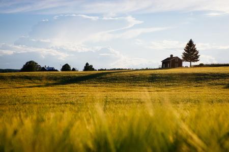 About Missouri Farm Bureau Insurance