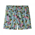 Spoonbills: Big Sky Blue - Patagonia - Men's Baggies Shorts - 5 in.