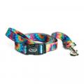 Dark Tie Dye - Chaco - Dog Leash
