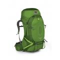 Absinthe Green - Osprey Packs - Atmos AG 65