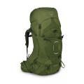 Garlic Mustard Green - Osprey Packs - Aether 65