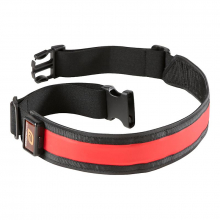 R-Gear Lets Get Visible LED Belt by R Gear