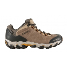 Men's Bridger Low BDry