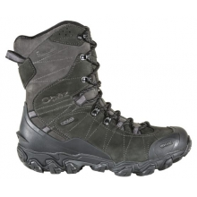 "Men's Bridger 10"" Insulated B-DRY by Oboz in Fairbanks Ak"