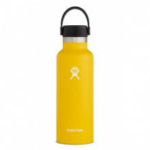 18 oz Skyline Standard Mouth by Hydro Flask in Medicine Hat Ab