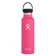 21 oz Skyline Standard Mouth by Hydro Flask in Mobile Al