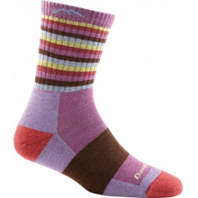 Women's Stripes Micro Crew Sock Cushion by Darn Tough in Plymouth Ma