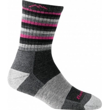 Women's Stripes Micro Crew Sock Cushion by Darn Tough in Denver Co